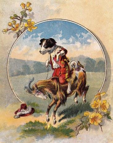Dog+on+goat-gfairy